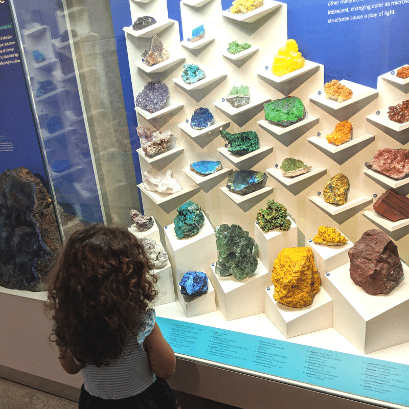 Exploring our local rock exhibit
